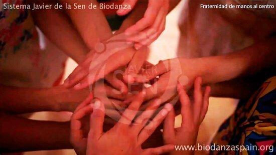 Formación-en-Biodanza-online,-danza.-Fraternidad-de-manos-al-centro-1