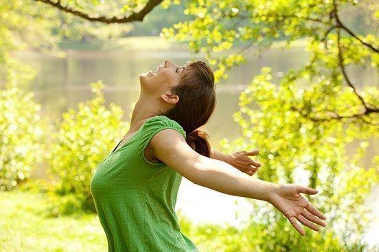 Objetivos-del-Taller-de-Mindfulness-Dinámico-Online. Javier de la Sen
